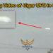 Stunning Video of Cigar UFO in Orlando, Florida